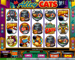 Alley Cats - Animal Themed Slot Game