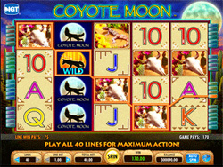 Coyote Moon Slot Screenshot