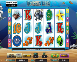 Dolphin King Slot Screenshot